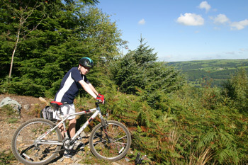 Beics Betws Mountain Bike Hire, Betws y Coed